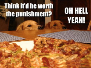 dogs with pizza